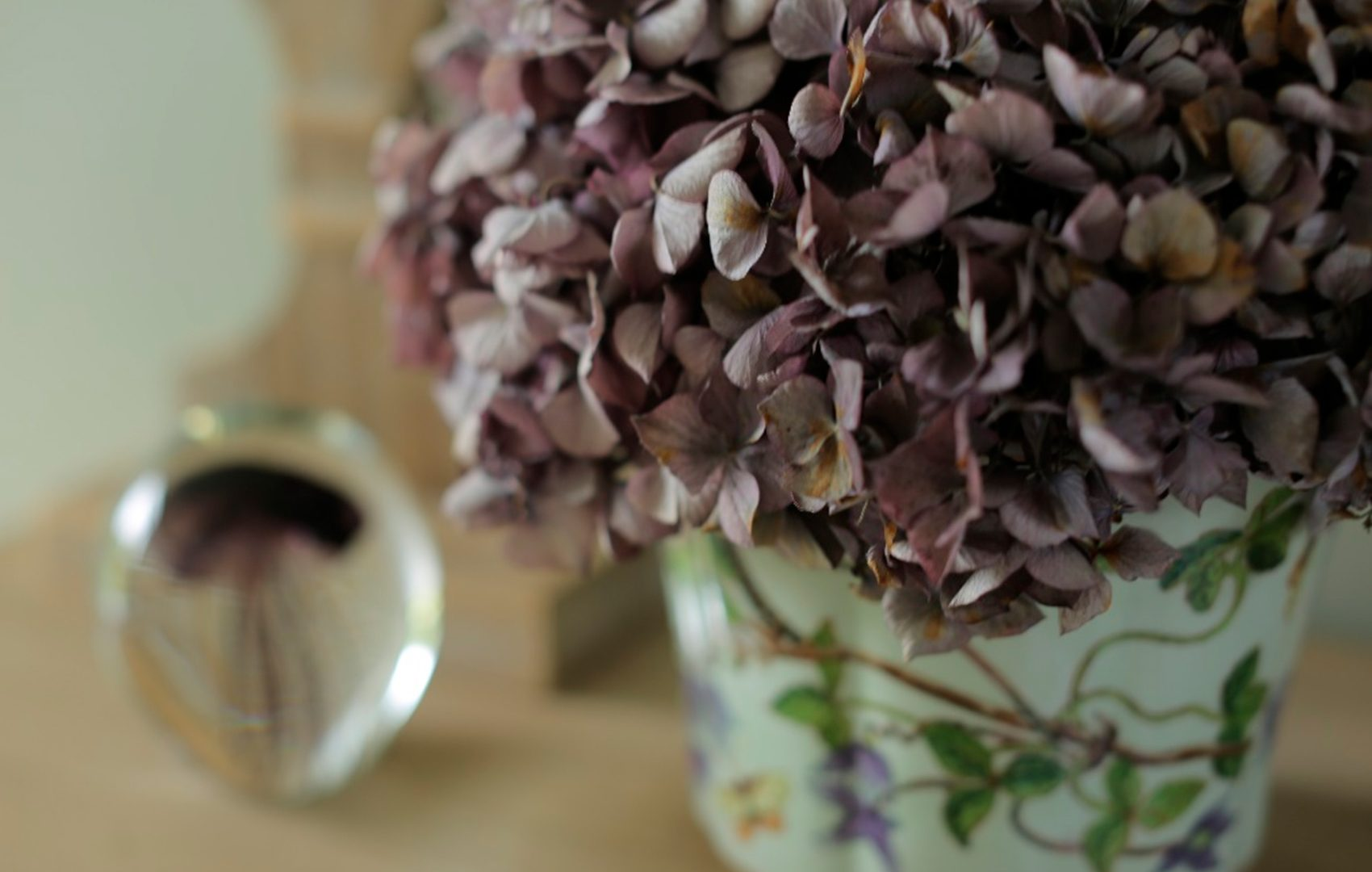 déco intérieure romantique en Normandie-hortensia séché