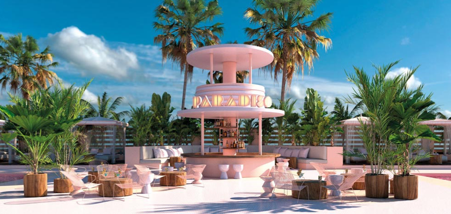 ibiza-paradisio-hôtel-colore-palmier-soleil-rose
